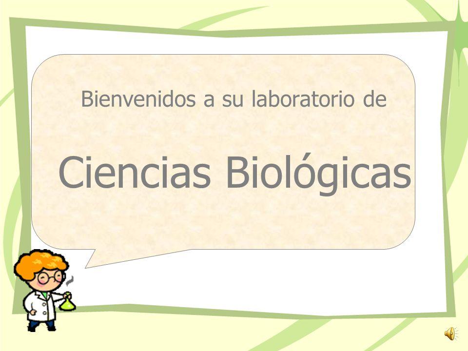 Bienvenidos a su laboratorio de