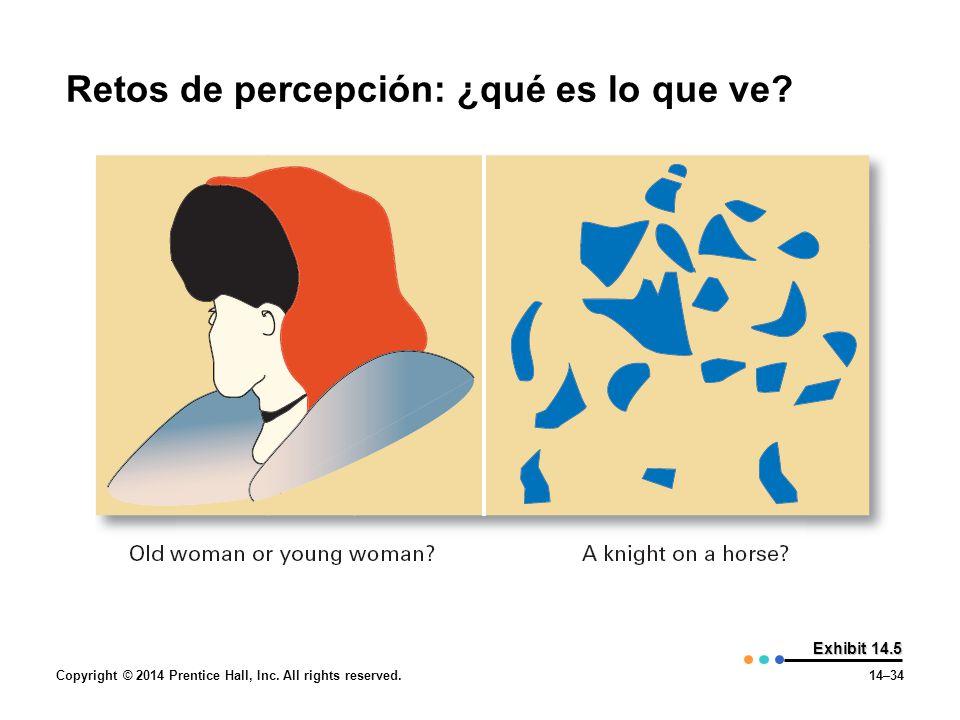 Retos de percepción: ¿qué es lo que ve