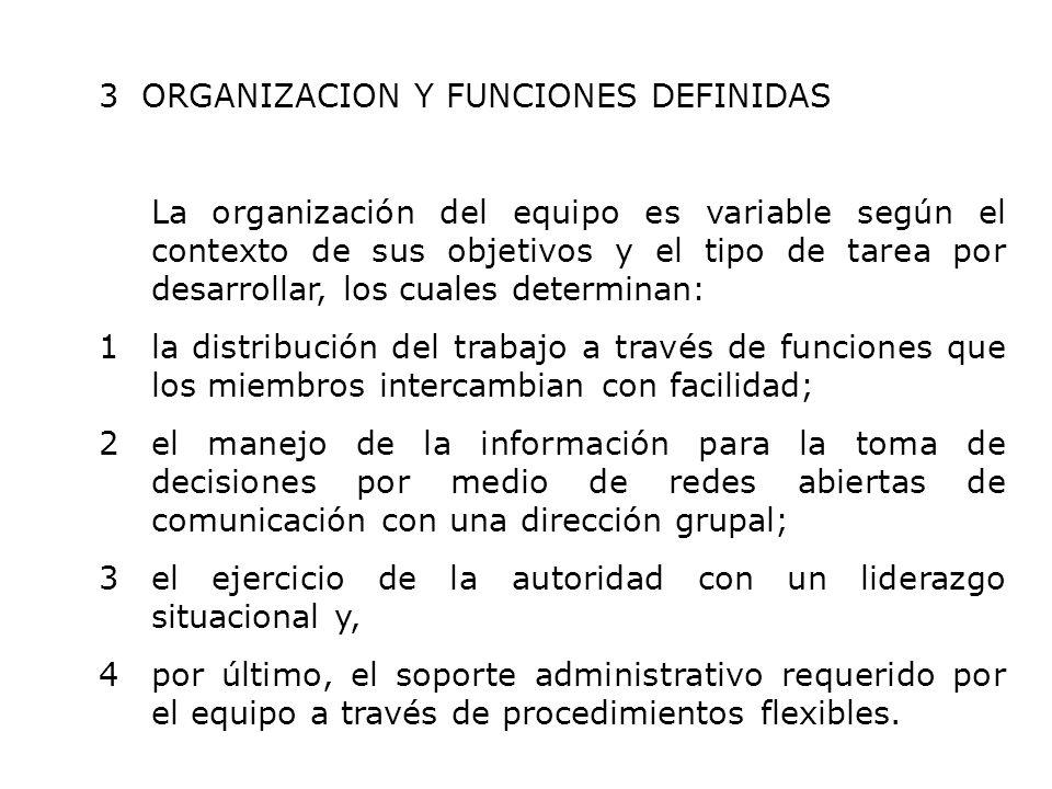 3 ORGANIZACION Y FUNCIONES DEFINIDAS