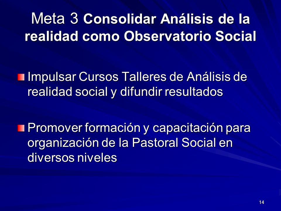 Meta 3 Consolidar Análisis de la realidad como Observatorio Social