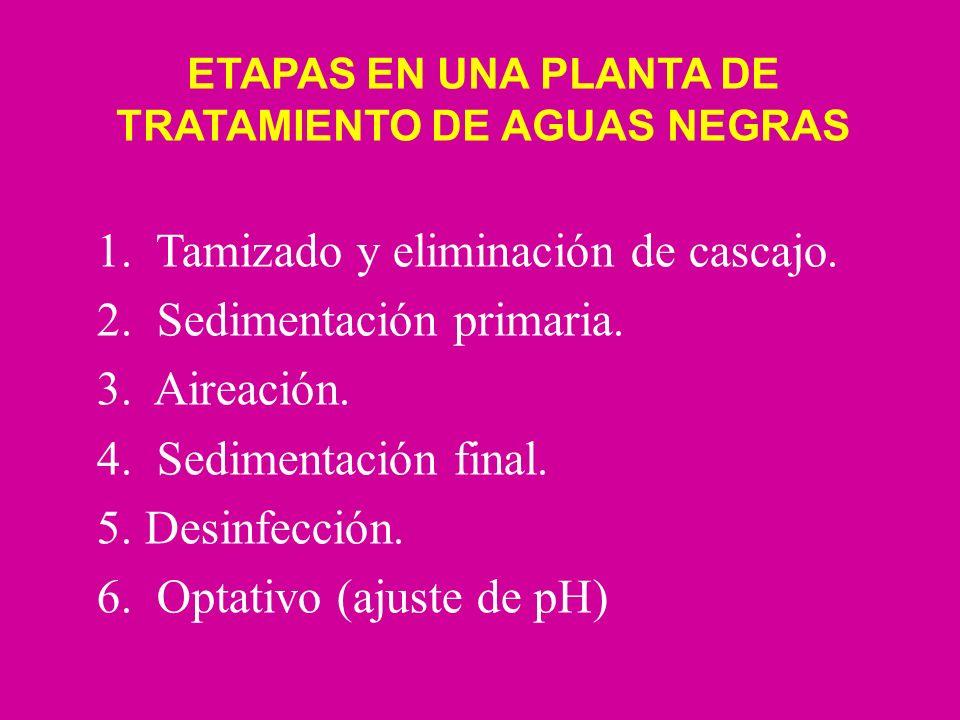 ETAPAS EN UNA PLANTA DE TRATAMIENTO DE AGUAS NEGRAS