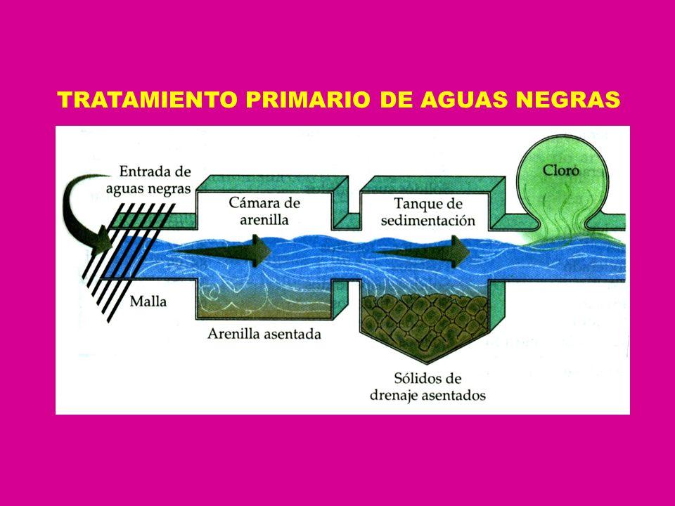 TRATAMIENTO PRIMARIO DE AGUAS NEGRAS