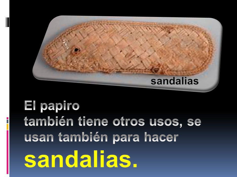 sandalias El papiro también tiene otros usos, se usan también para hacer sandalias.