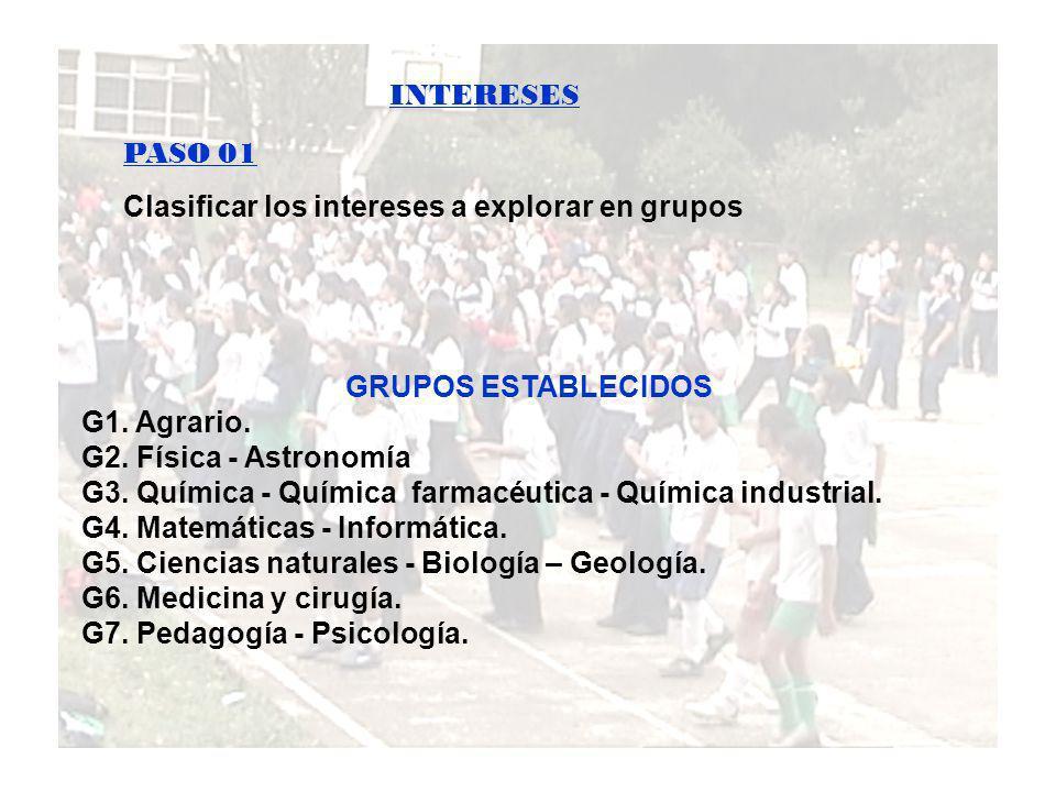 Clasificar los intereses a explorar en grupos