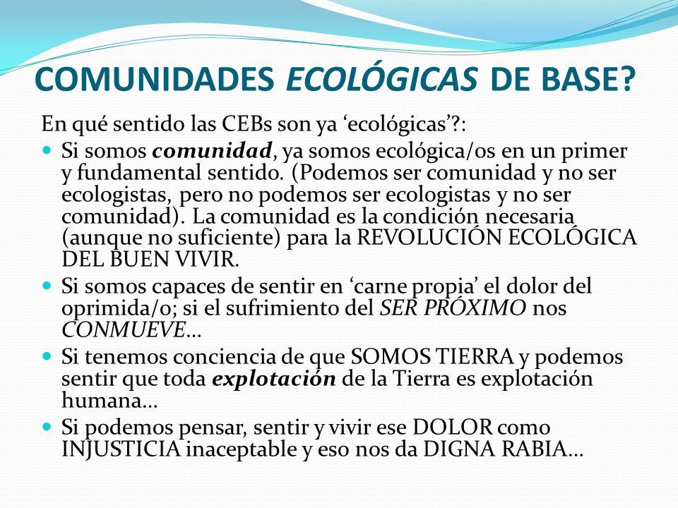 COMUNIDADES ECOLÓGICAS DE BASE