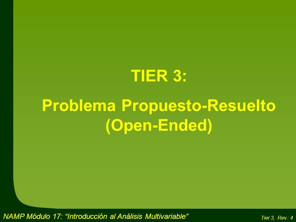 Problema Propuesto-Resuelto (Open-Ended)