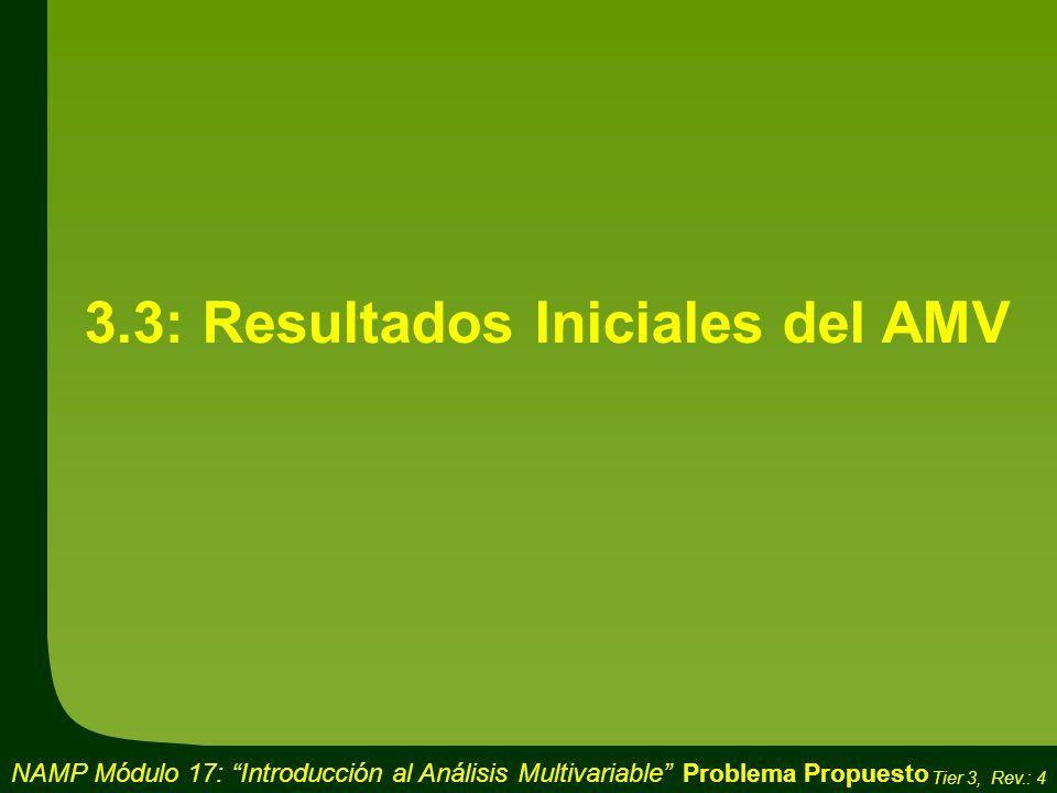 3.3: Resultados Iniciales del AMV