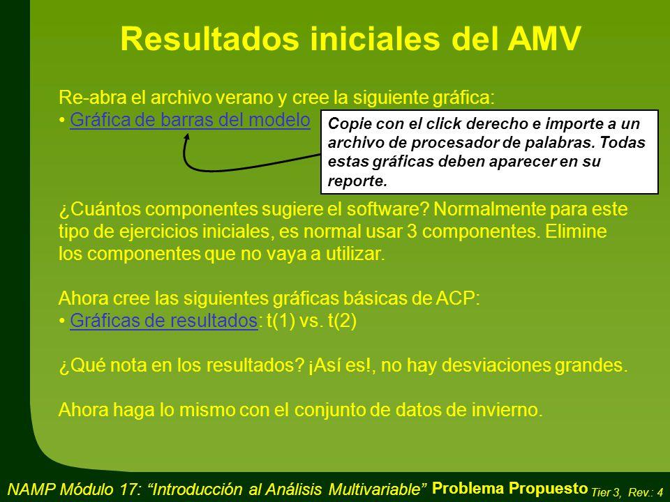 Resultados iniciales del AMV