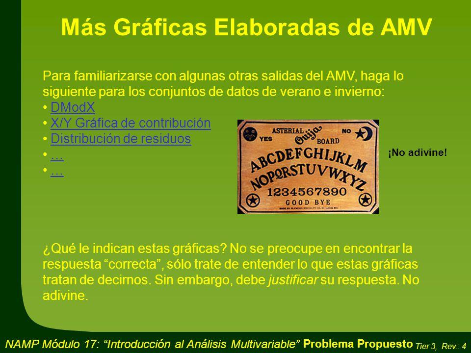 Más Gráficas Elaboradas de AMV