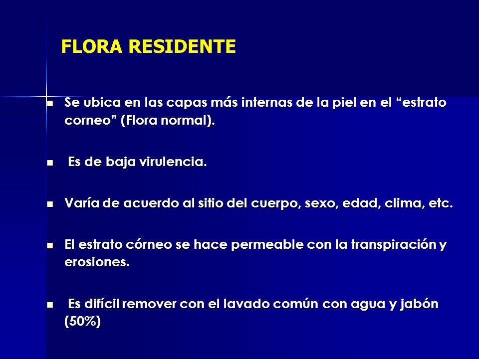 FLORA RESIDENTE Se ubica en las capas más internas de la piel en el estrato corneo (Flora normal).