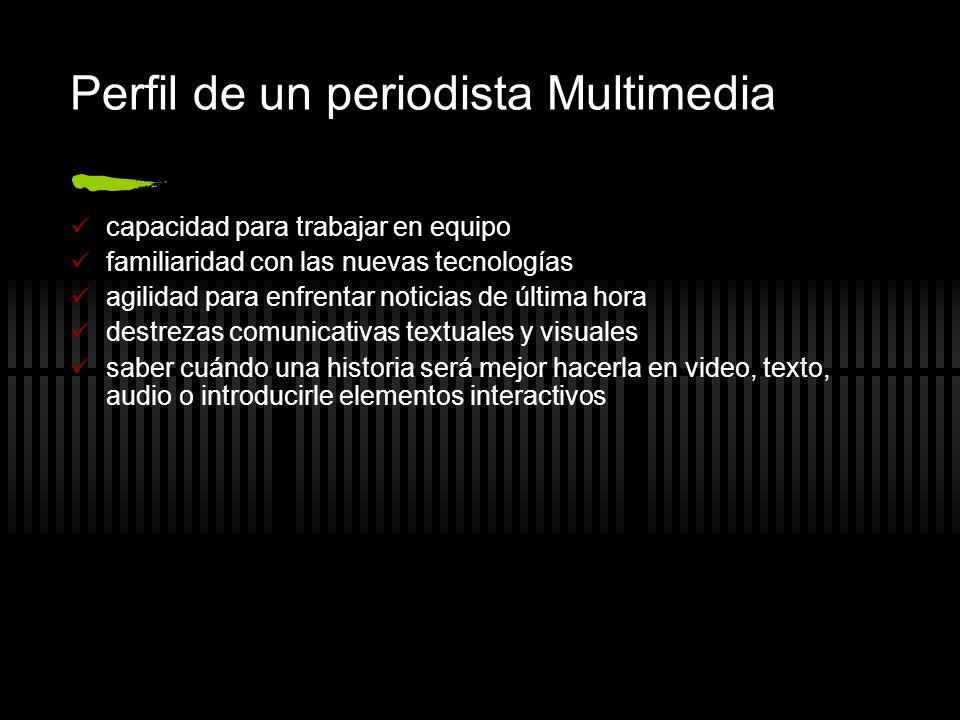 Perfil de un periodista Multimedia