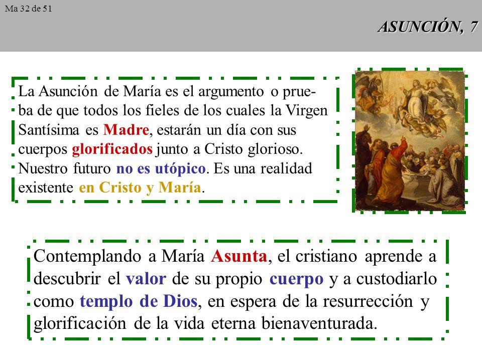 Contemplando a María Asunta, el cristiano aprende a