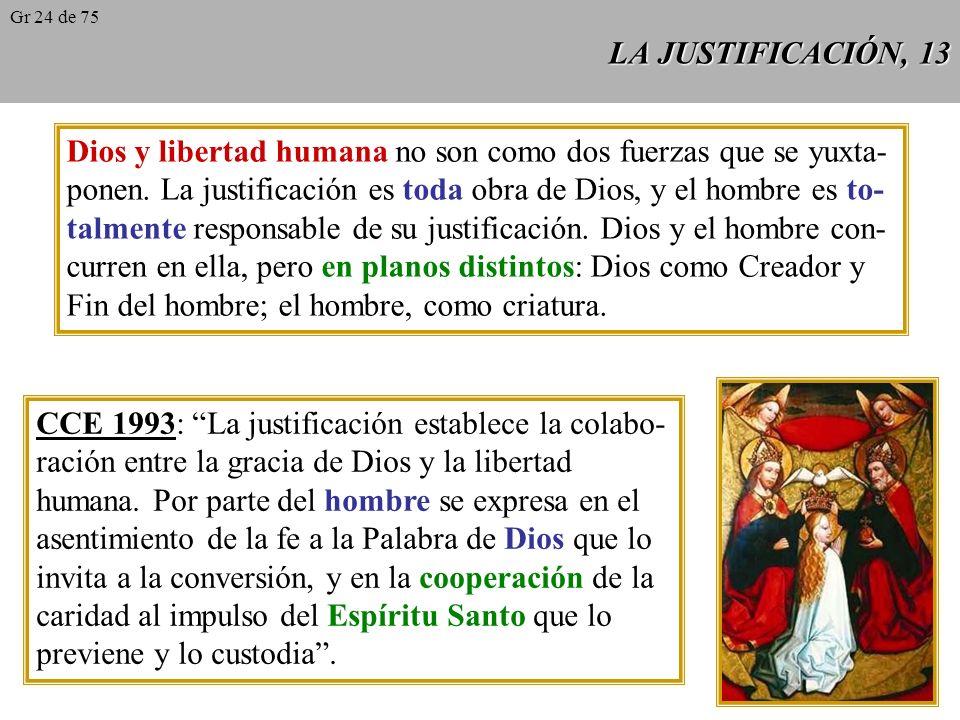 Dios y libertad humana no son como dos fuerzas que se yuxta-