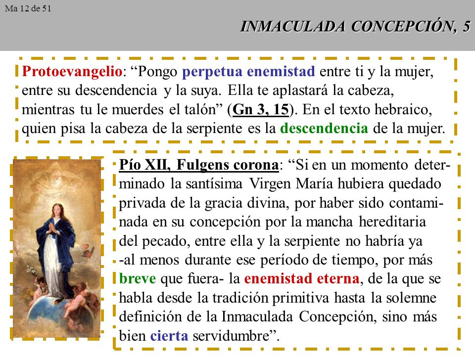 INMACULADA CONCEPCIÓN, 5
