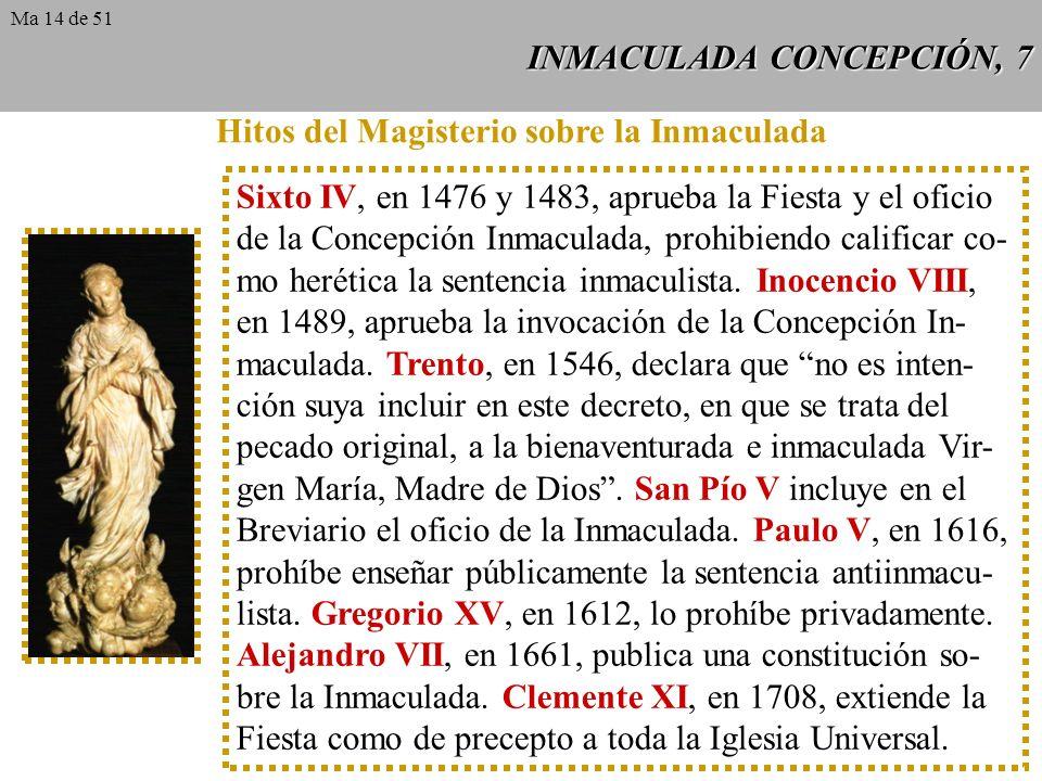 INMACULADA CONCEPCIÓN, 7