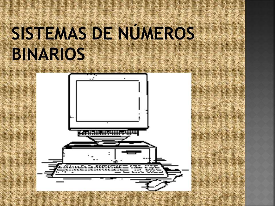 SISTEMAS DE NÚMEROS BINARIOS
