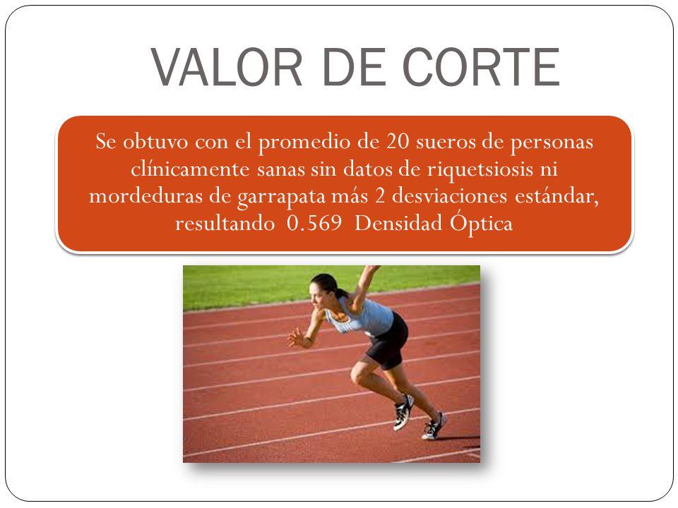 VALOR DE CORTE