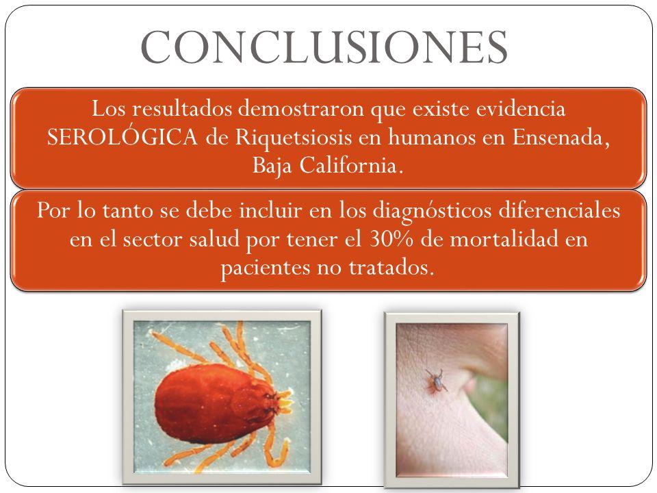 CONCLUSIONES Los resultados demostraron que existe evidencia SEROLÓGICA de Riquetsiosis en humanos en Ensenada, Baja California.