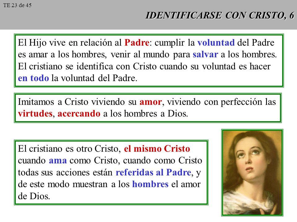 IDENTIFICARSE CON CRISTO, 6