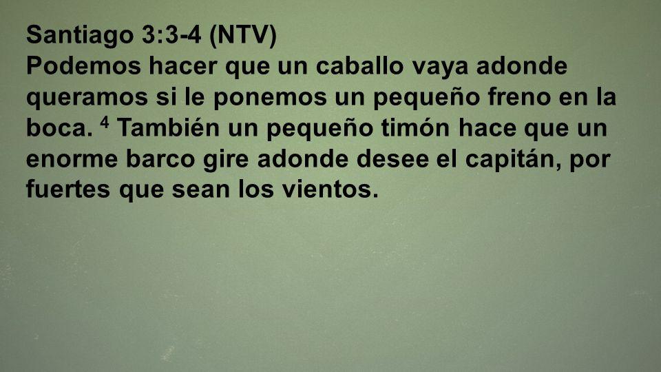 Santiago 3:3-4 (NTV)