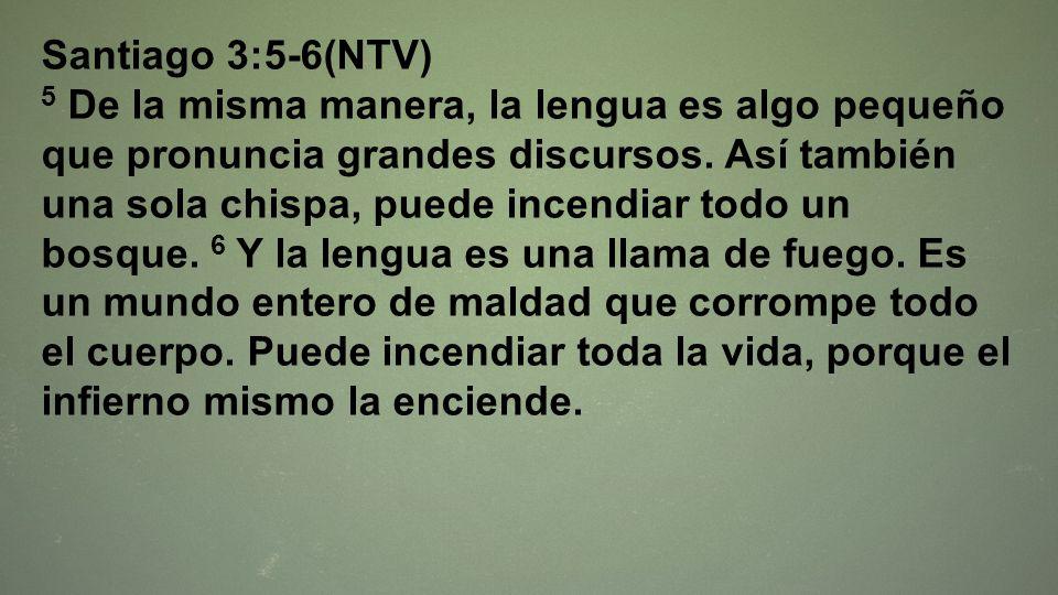 Santiago 3:5-6(NTV)