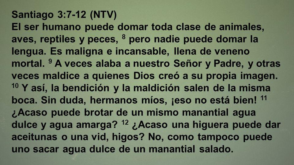 Santiago 3:7-12 (NTV)