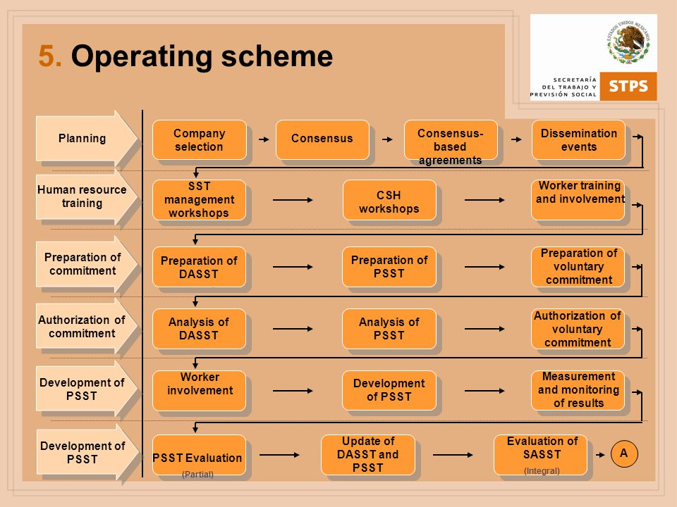 5. Operating scheme Company selection Consensus