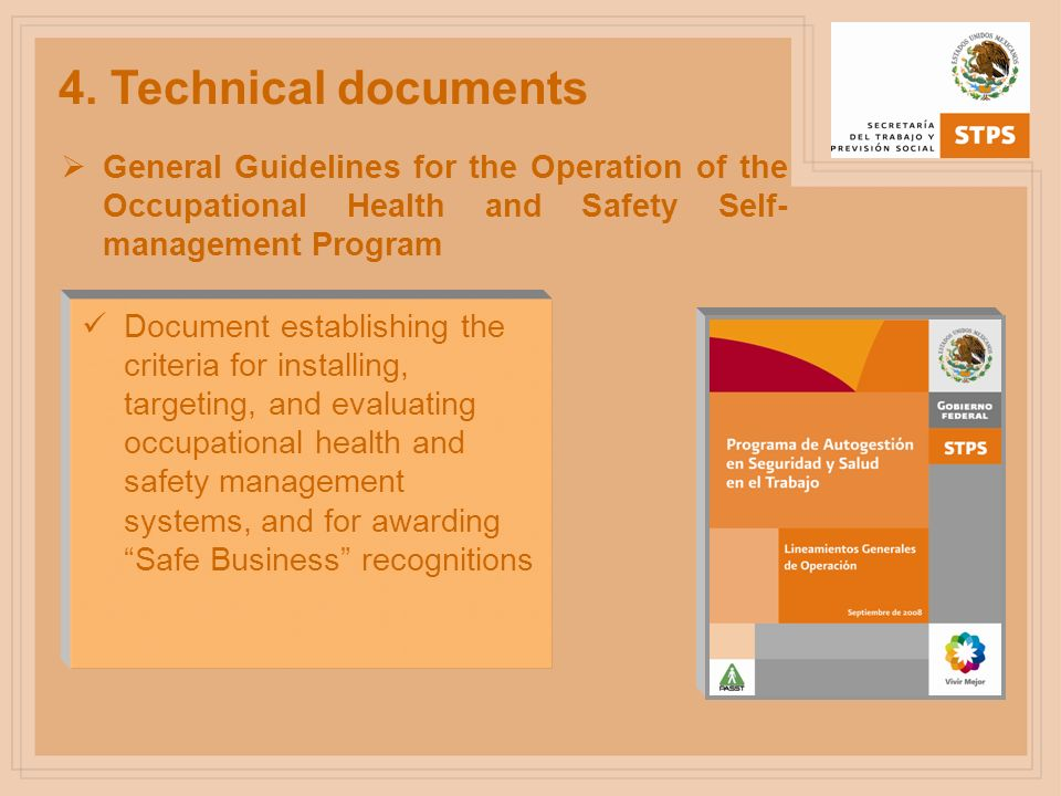 4. Technical documentsGeneral Guidelines for the Operation of the Occupational Health and Safety Self-management Program.