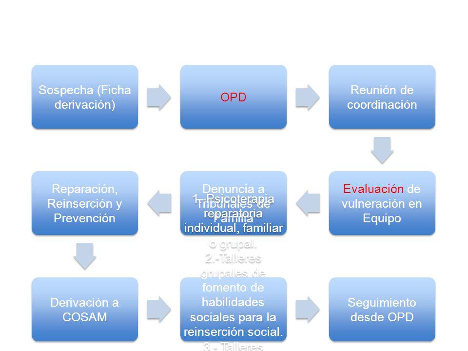 Sospecha (Ficha derivación) OPD Reunión de coordinación