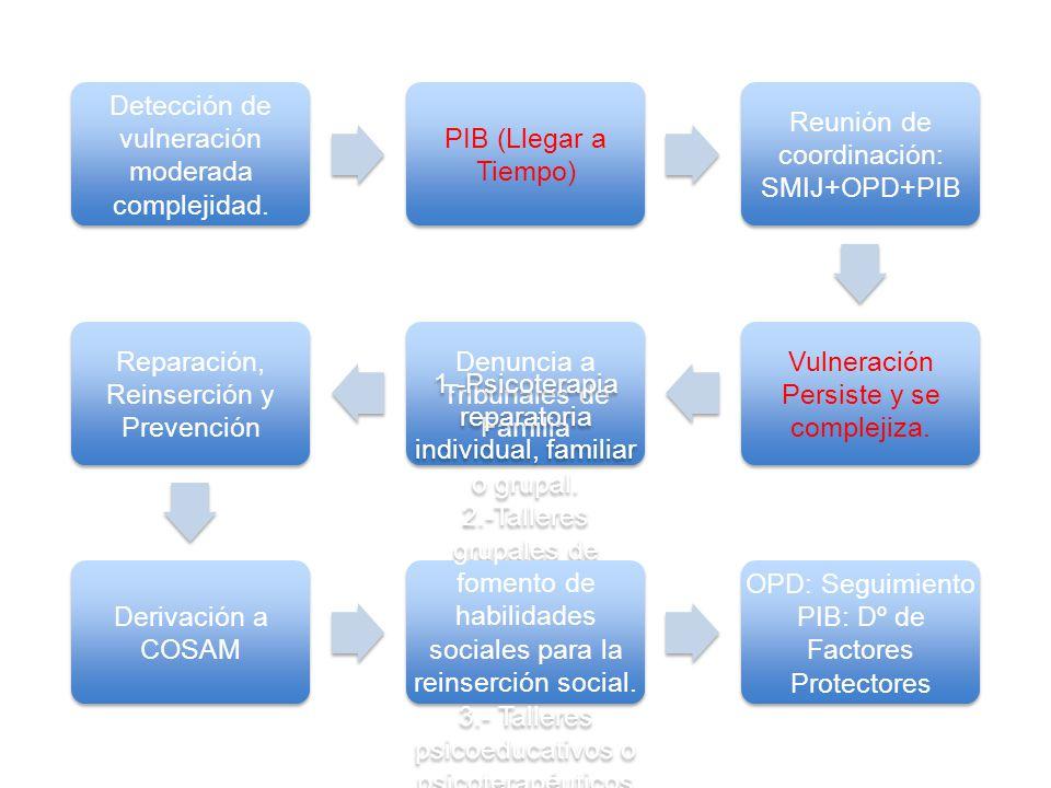 Detección de vulneración moderada complejidad. PIB (Llegar a Tiempo)