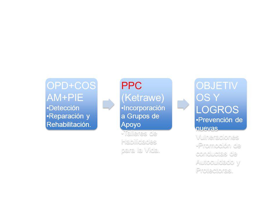 OPD+COSAM+PIE PPC (Ketrawe) OBJETIVOS Y LOGROS Detección