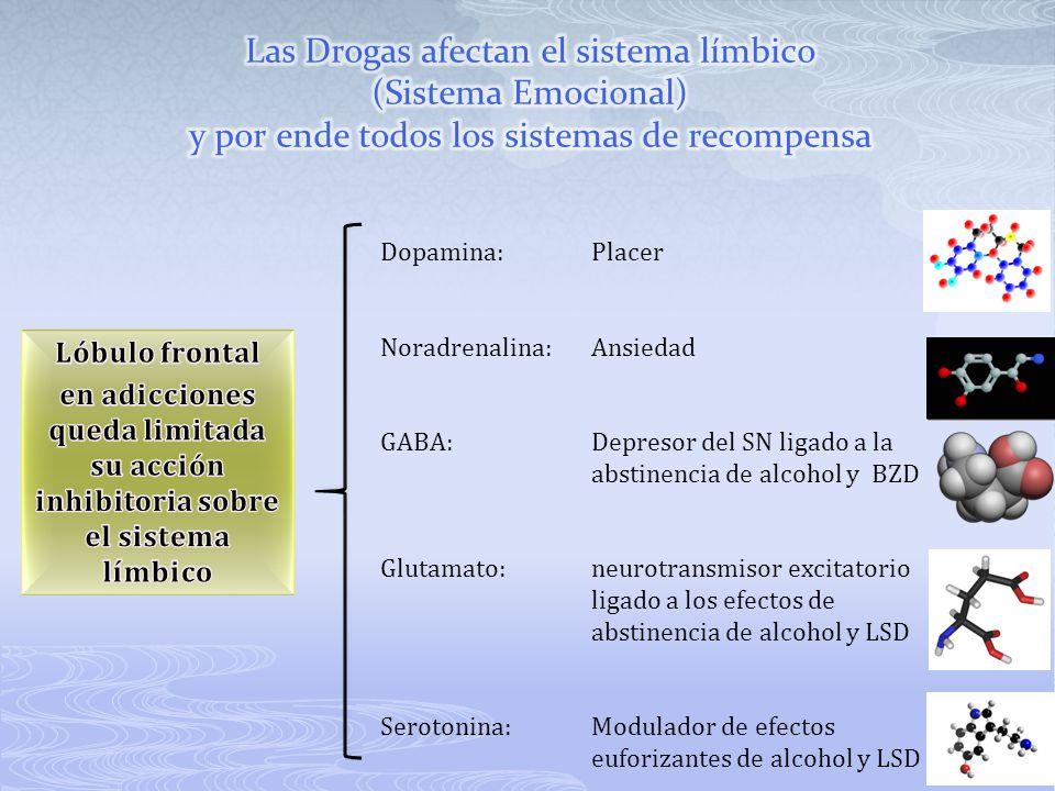 Las Drogas afectan el sistema límbico (Sistema Emocional) y por ende todos los sistemas de recompensa