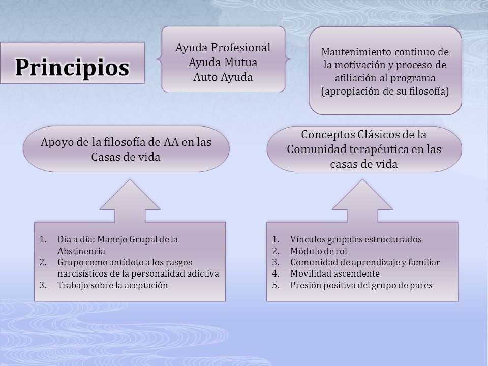 Principios Ayuda Profesional Ayuda Mutua Auto Ayuda