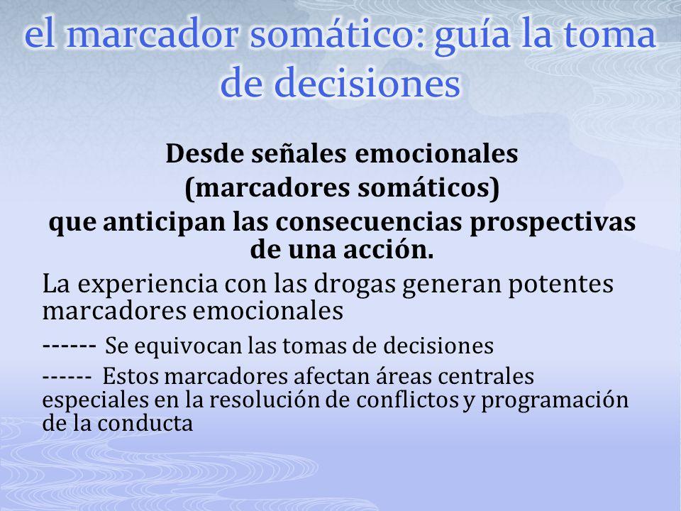 el marcador somático: guía la toma de decisiones