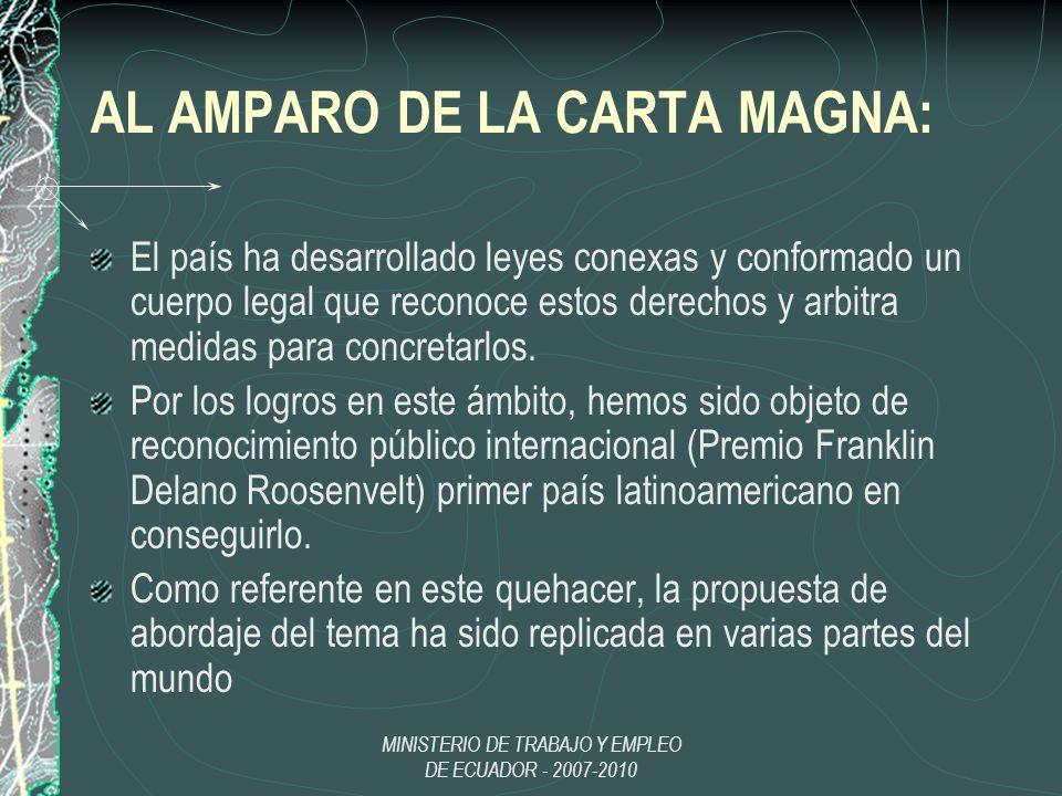 AL AMPARO DE LA CARTA MAGNA: