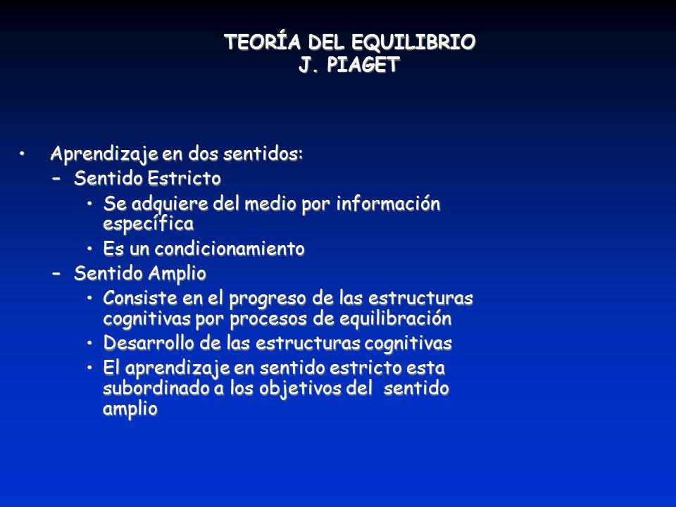 TEORÍA DEL EQUILIBRIO J. PIAGET