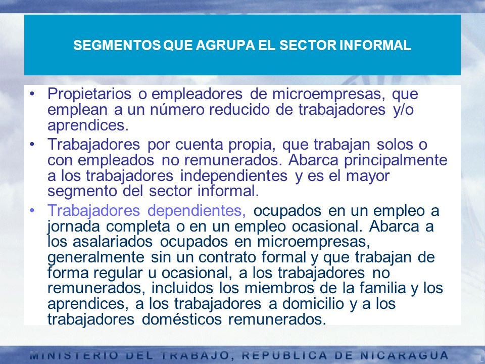 SEGMENTOS QUE AGRUPA EL SECTOR INFORMAL