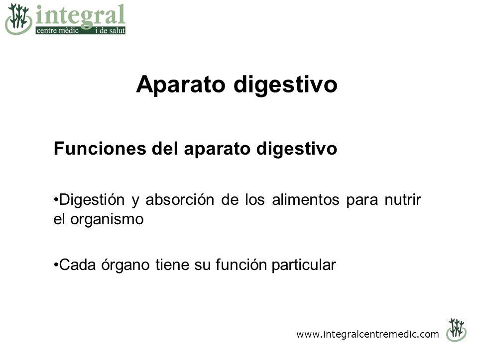 Aparato digestivo Funciones del aparato digestivo