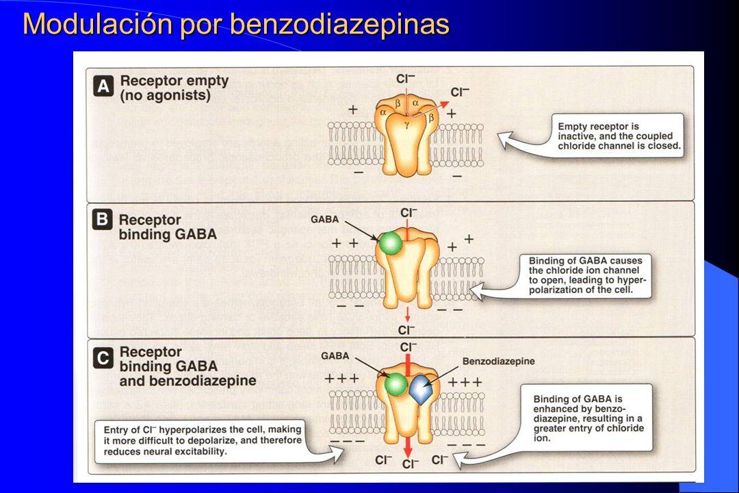 Modulación por benzodiazepinas