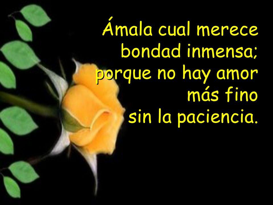 Ámala cual merece bondad inmensa; porque no hay amor más fino sin la paciencia.