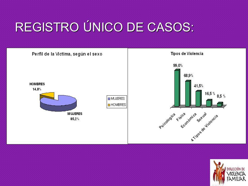 REGISTRO ÚNICO DE CASOS: