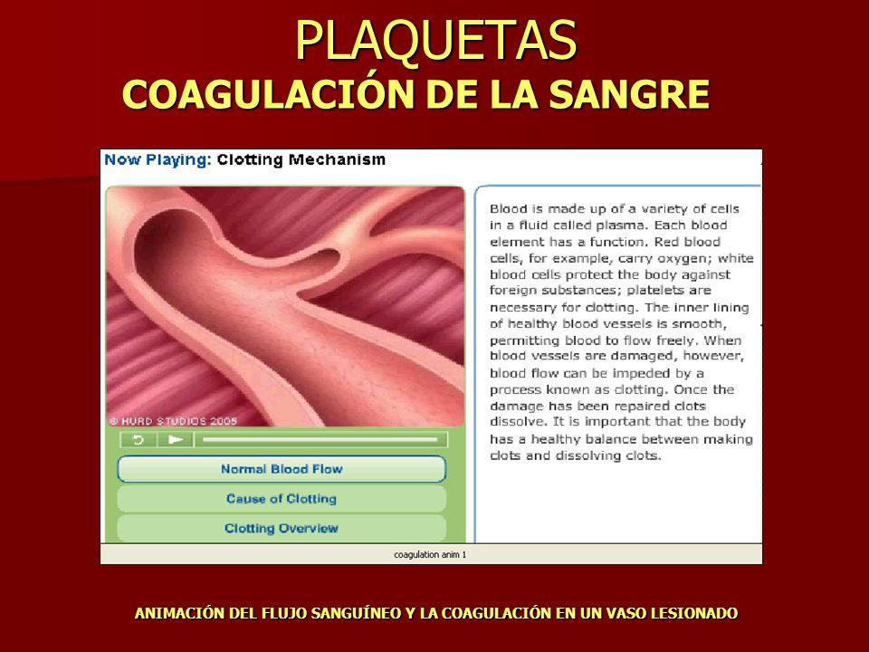 PLAQUETAS COAGULACIÓN DE LA SANGRE