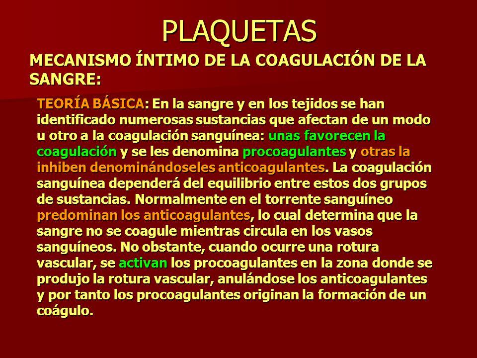 PLAQUETAS MECANISMO ÍNTIMO DE LA COAGULACIÓN DE LA SANGRE: