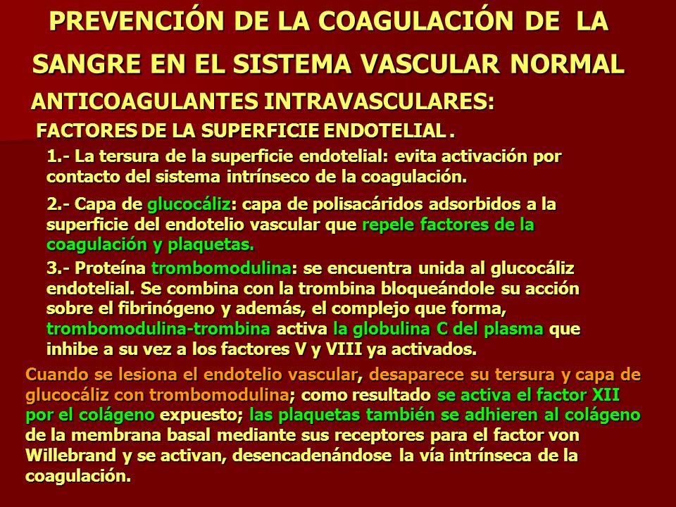 PREVENCIÓN DE LA COAGULACIÓN DE LA SANGRE EN EL SISTEMA VASCULAR NORMAL