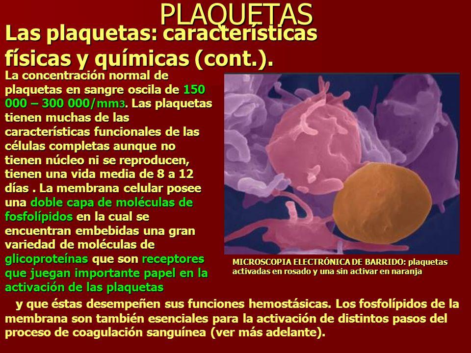 PLAQUETAS Las plaquetas: características físicas y químicas (cont.).