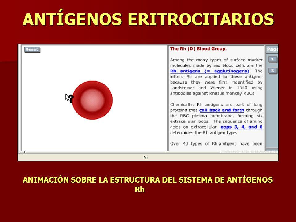 ANTÍGENOS ERITROCITARIOS