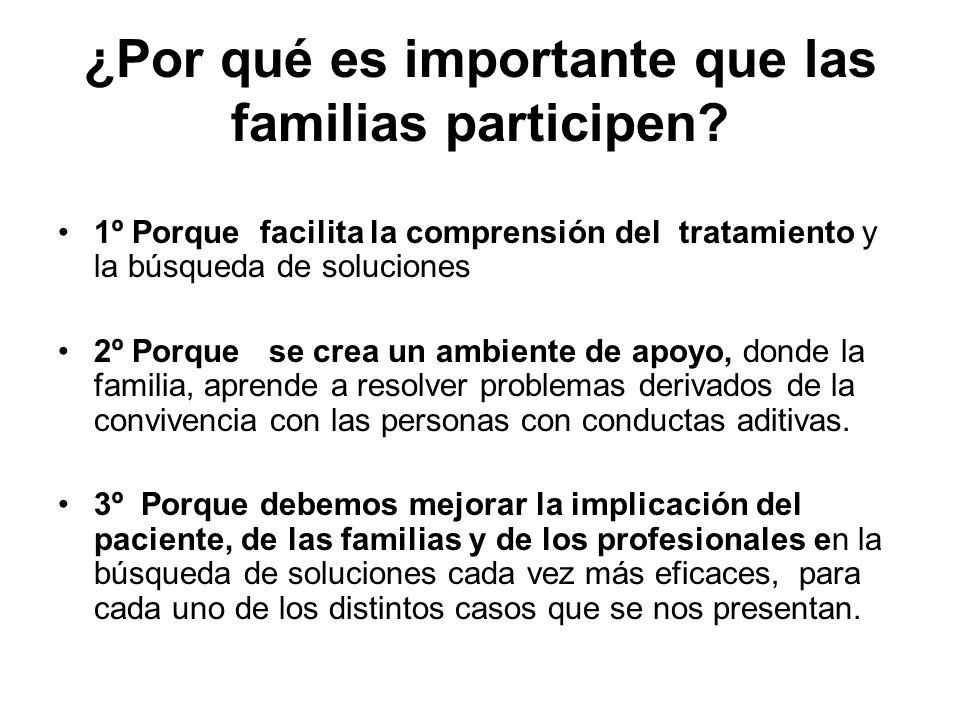 ¿Por qué es importante que las familias participen