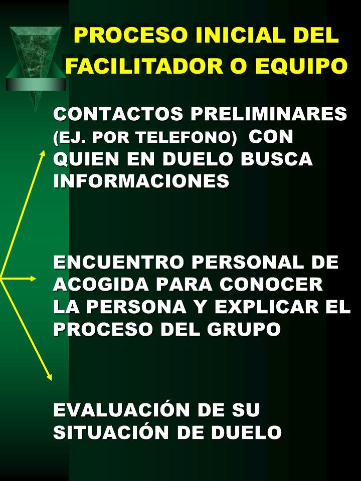 PROCESO INICIAL DEL FACILITADOR O EQUIPO