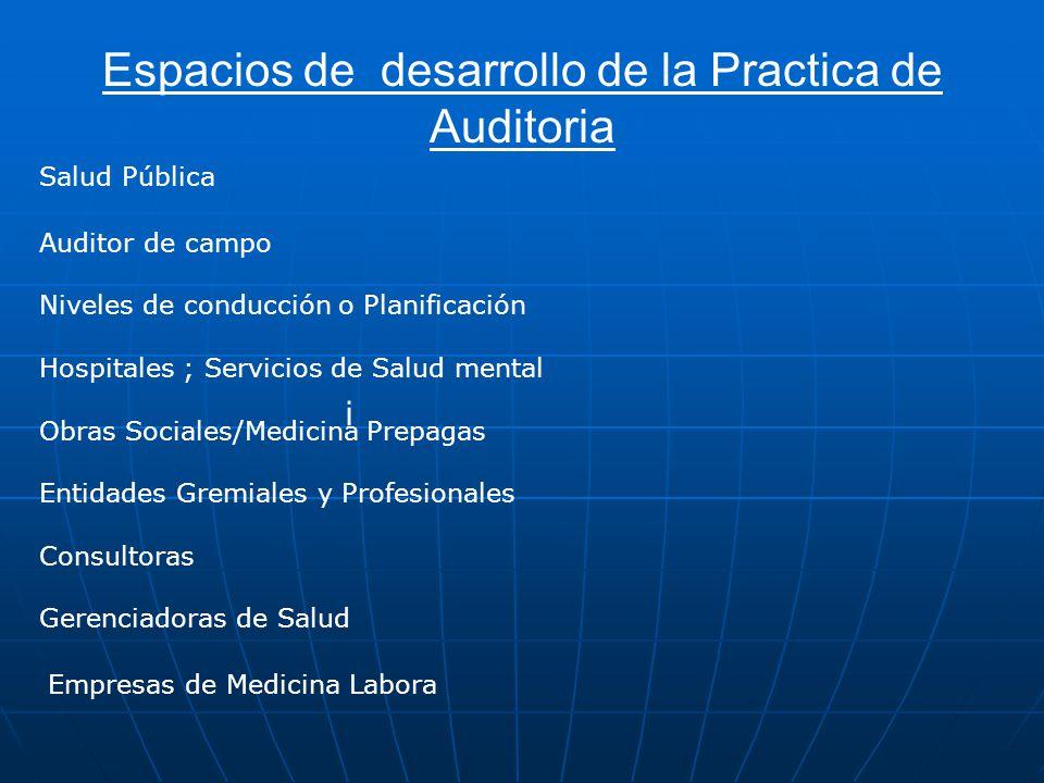 Espacios de desarrollo de la Practica de Auditoria