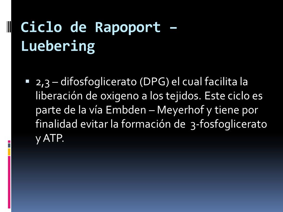 Ciclo de Rapoport – Luebering